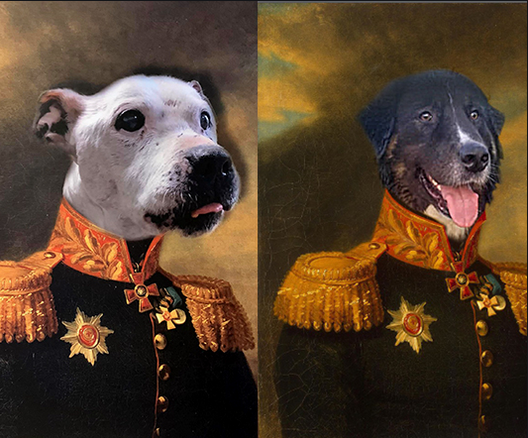 The dog portraits can also bear the name of your pet