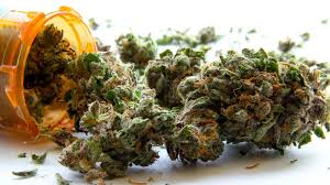 Now buyers are able to acquire cannabis legale at an affordable price